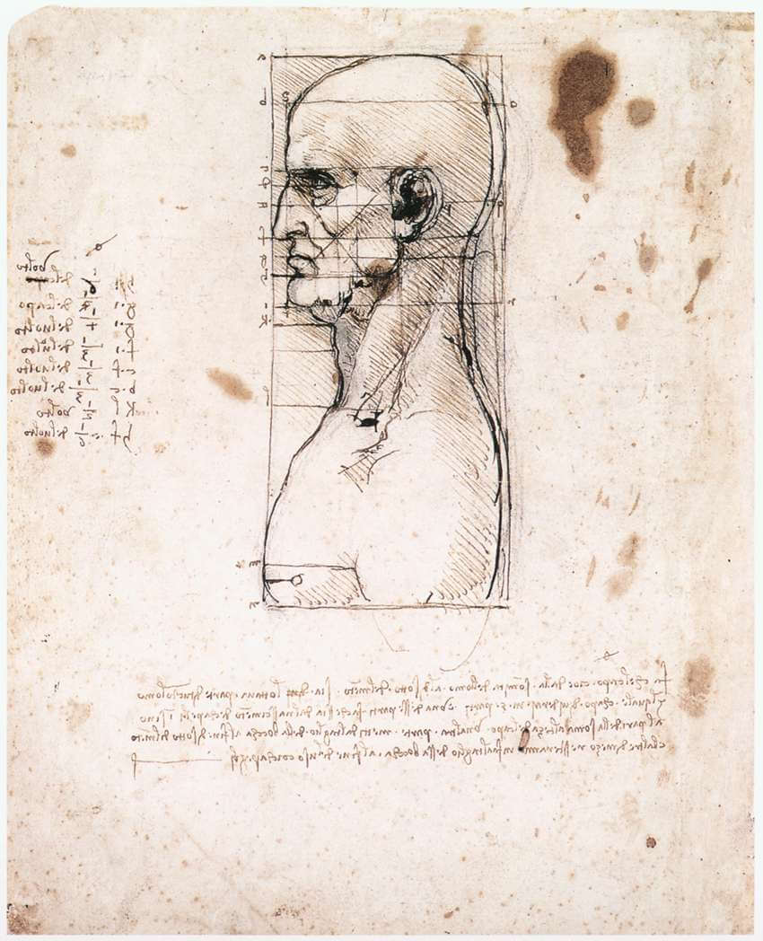 Bust of a man in profile with measurements and notes - by Leonardo da Vinci
