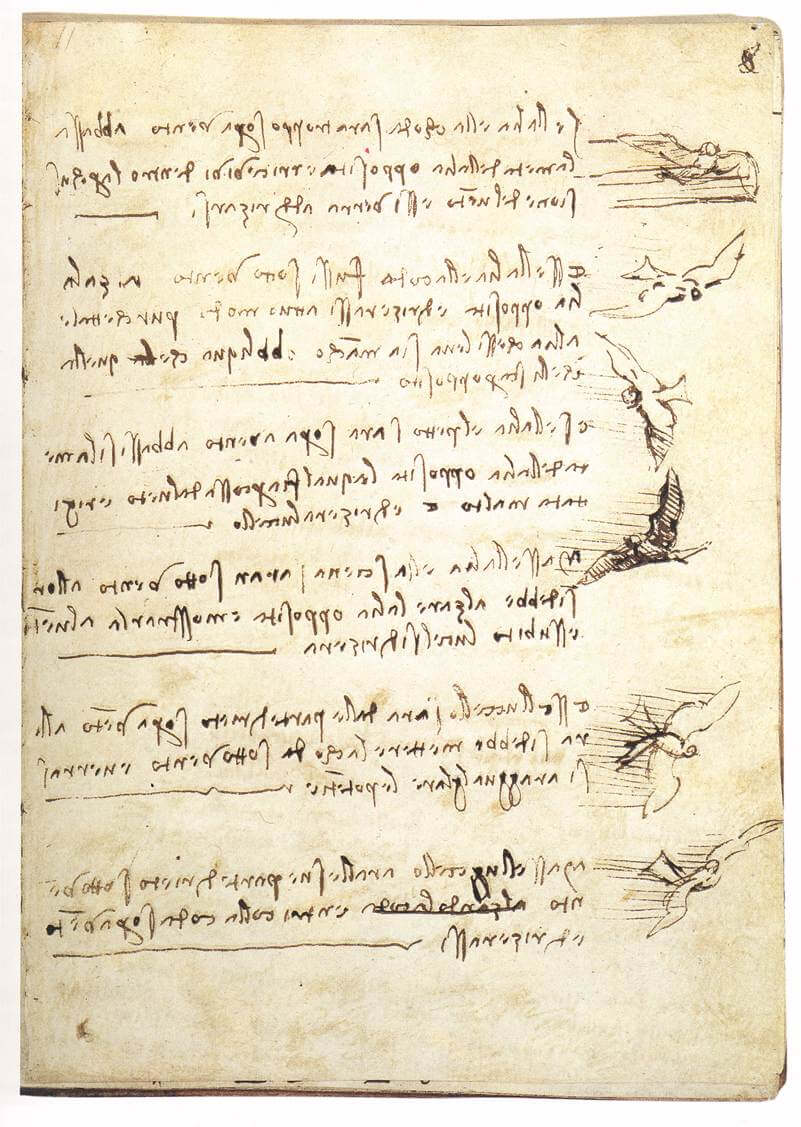 Codex on the flight of birds - by Leonardo da Vinci