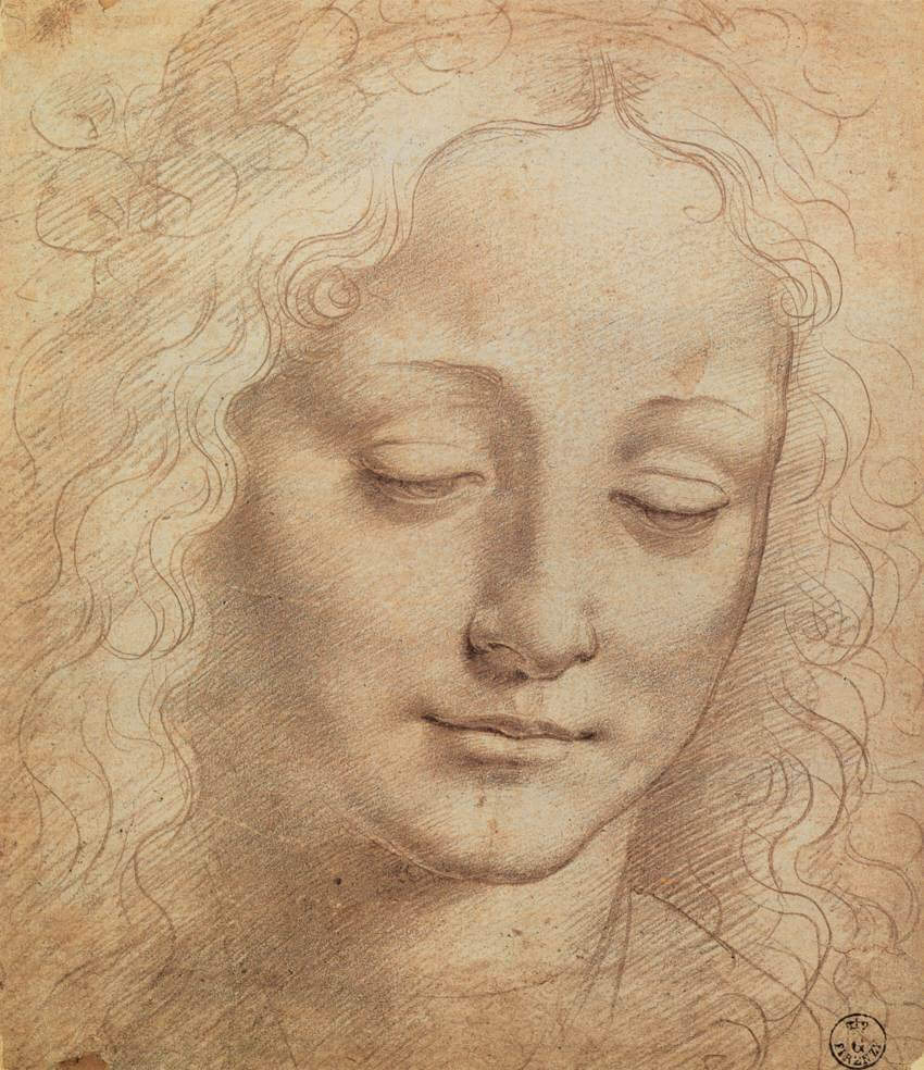 Female head - by Leonardo da Vinci