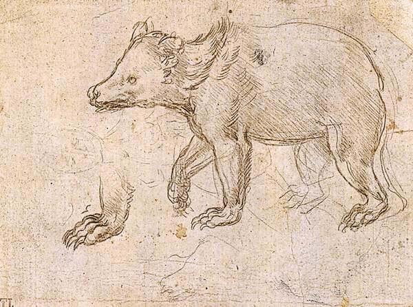 Leonardo da Vinci Biography  Biography