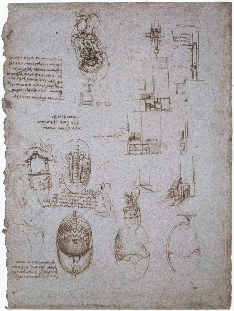 Studies Of The Villa Melzi And Anatomical Study By Leonardo Da Vinci