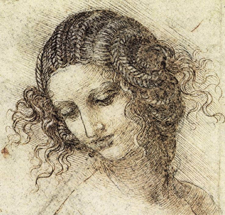 Study for the head of leda - by Leonardo da Vinci