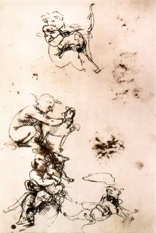 Study of a child with a cat - by Leonardo da Vinci