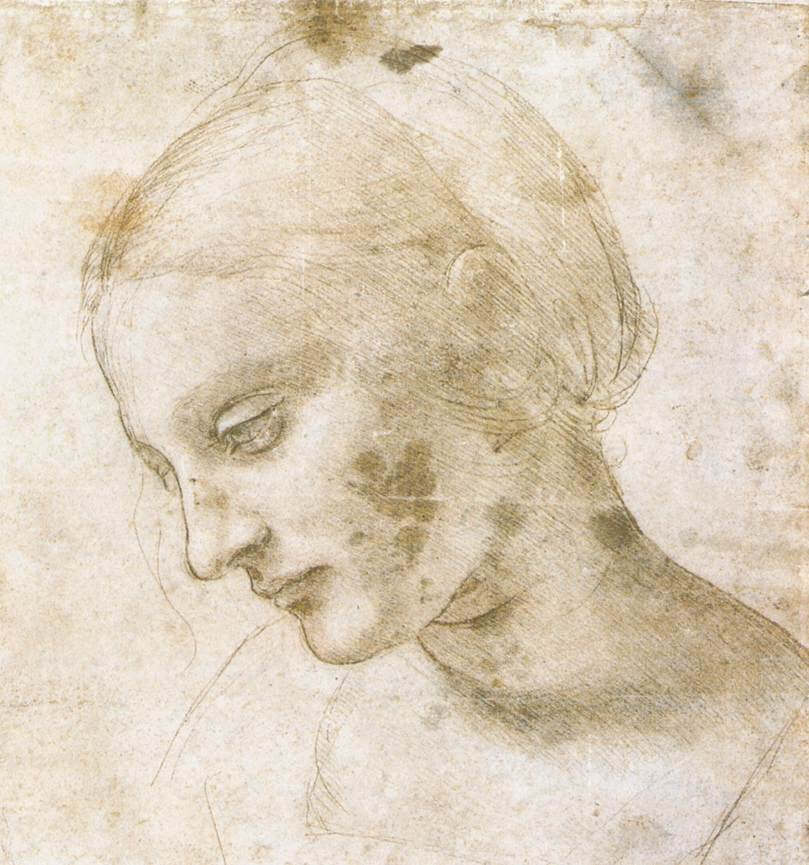 Study of a womans head - by Leonardo da Vinci