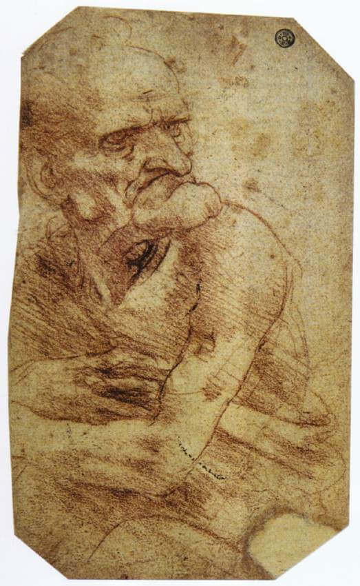 Study of an old man - by Leonardo da Vinci