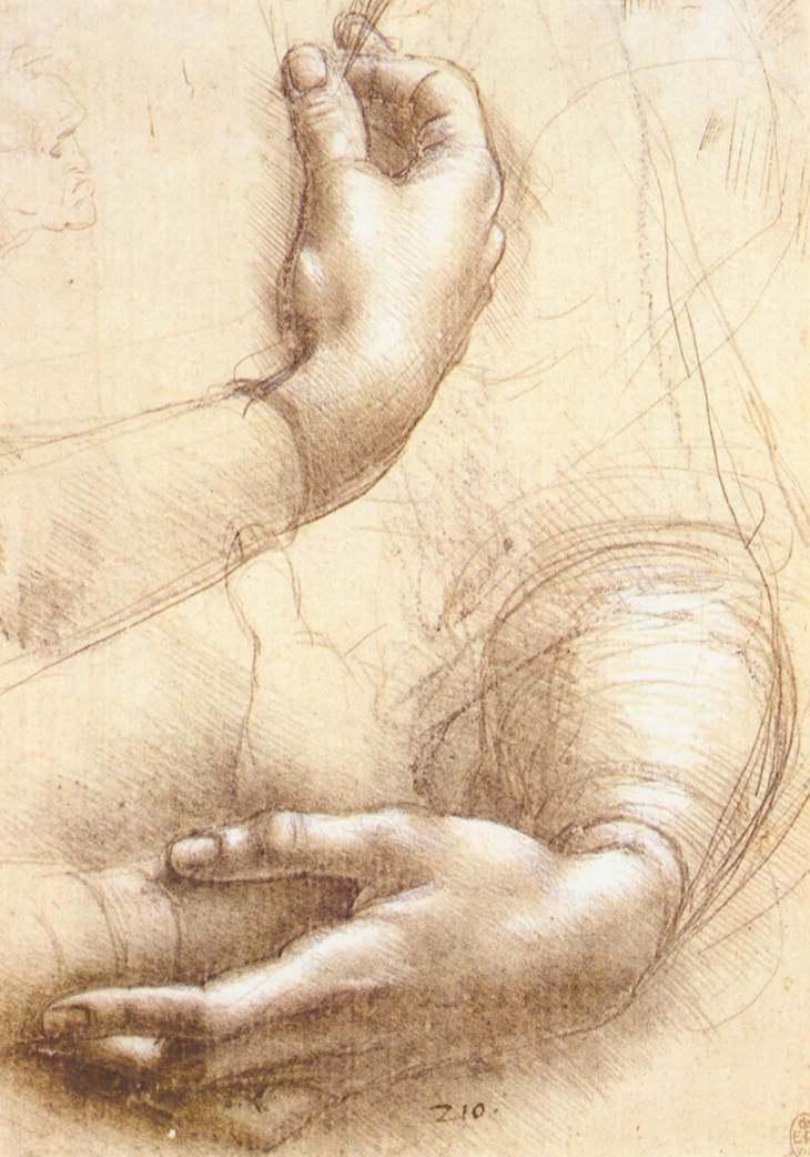 study of arms and hands by leonardo da vinci