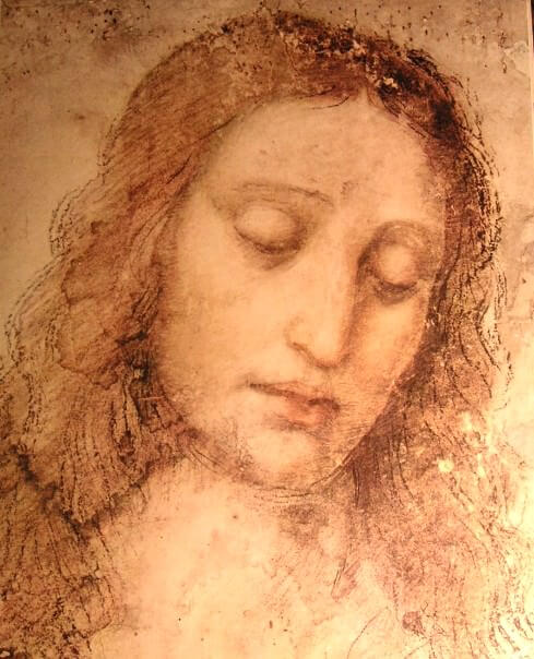 Study of christ for the last supper - by Leonardo da Vinci