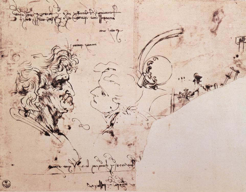 Study sheet - by Leonardo da Vinci