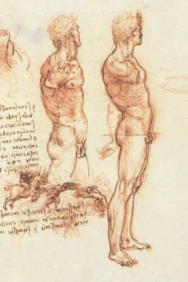 The anatomy of a male nude and a battle scene - by Leonardo da Vinci