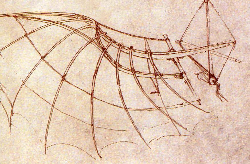 Wing Construction with Engineering Design - by Leonardo da Vinci