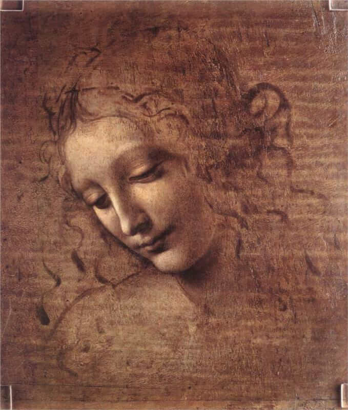 Head of a Young Woman - by Leonardo Da Vinci