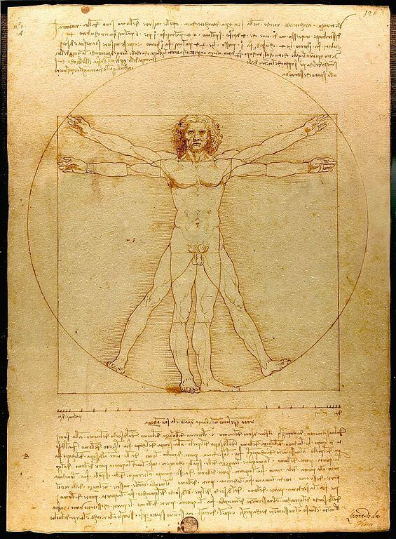 The Vitruvian Man by Da Vinci
